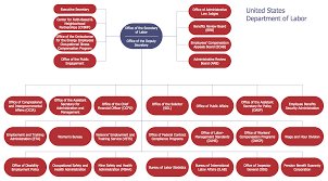 how to draw an organization chart examples of flowcharts org