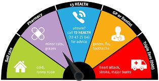 emergency department metro south health