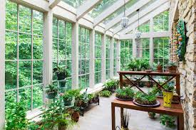 greenhouse sunroom greenhouse plants a sunroom traditional with garden