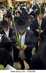 prayers for sukkot an esrog lulav and prayer book at sukkot morning services at a