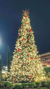 How To Decorate Outdoor Trees With Lights - christmas tree lighting commercial tower trees