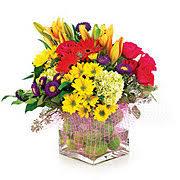 Send Flowers San Antonio - heb flower delivery austin houston and san antonio