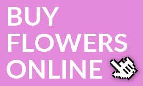 Wholesale Flowers Online Flowers Buy Fresh Flowers Online Tesselaars