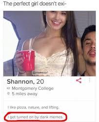 Perfect Girl Meme - dopl3r com memes the perfect girl doesnt exi memezar shannon