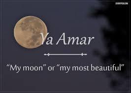 best 25 arabic words ideas on pinterest learning arabic arabic