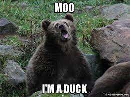 Moo Meme - moo i m a duck sarcastic bear make a meme