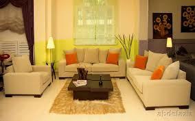 interior decorating ideas buybrinkhomes