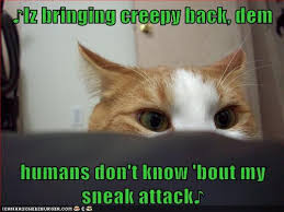 Sneaky Cat Meme - iz bringing creepy back lolcats lol cat memes funny cats