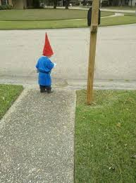 Gnome Halloween Costume Toddler 31 Love Gnomes Images Gnome Costume