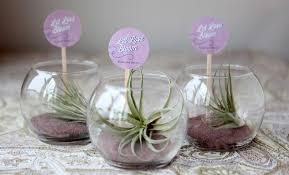 mini terrariums weddings ideas from evermine