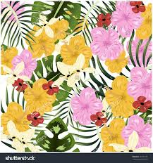 Tropical Flowers And Plants - beautiful tropical flowers plants pattern background stock vector