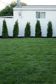 Backyard Landscaping Ideas For Privacy by Backyard Landscaping Design Room For Tuesday Blog