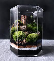desk terrarium desk design ideas