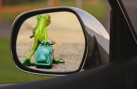 free photo time to go frog farewell sad free image on