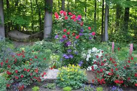 Botanical Gardens In Ohio by Color In Daniela U0027s Garden In Ohio Fine Gardening