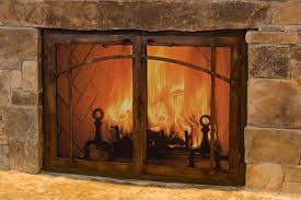Ideas Fireplace Doors Traditional Library Fireplace Ideas With Custom Glass Fireplace