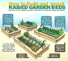 Raised Vegetable Garden Layout Vegtable Garden Layout How To Plan Your Vegetable Garden Layout