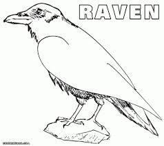 coloring pages ravens coloring page ravens printable coloring
