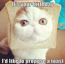 Make A Birthday Meme - joke4fun memes let s make a toast