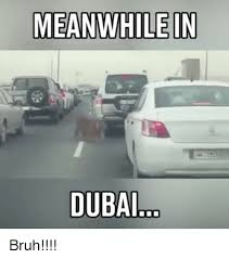 Dubai Memes - 25 best memes about meanwhile in dubai meanwhile in dubai memes