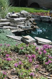 Backyard Pond Landscaping Ideas 67 Cool Backyard Pond Design Ideas Digsdigs