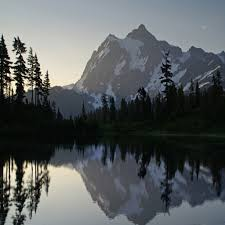 Lincoln Park Seattle Parks Hikes by Mount Olympus Olympic National Park The Pacific Northwest