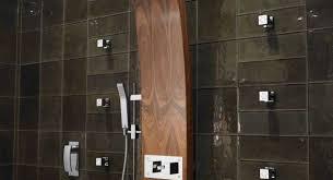 small bathroom ideas houzz shower shower designs amazing bathroom shower designs modern