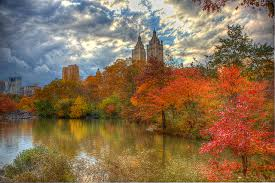 New York nature activities images Anticipating autumn in new york city 5 fall activities jpg