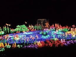 Bellevue Botanical Garden Lights Ten Breathtaking Christmas Light Displays From Around The World