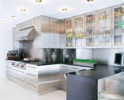 Stainless Steel Kitchen Cabinets Doors Roselawnlutheran - Amazing stainless steel kitchen cabinet doors home