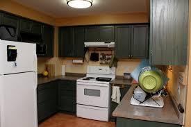 Dark Kitchen Cabinets With Black Appliances Black Brown Kitchen Cabinets One Of The Best Home Design