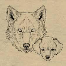how to draw animals envato tuts design u0026 illustration tutorials