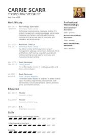 Teacher Resume Examples 2013 by Technology Specialist Resume Samples Visualcv Resume Samples