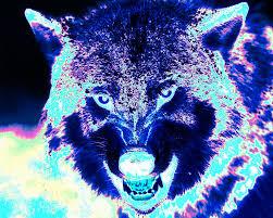 large black light posters wolf black light art painting by shane dufoe