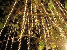 24 best twinkle lights images on twinkle lights