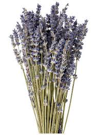 Dried Flower Arrangements Dried Flower Arrangement Ideas You U0027d Want To Take Away