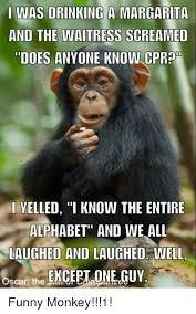 Funny Monkey Meme - 25 best memes about funny monkey funny monkey memes