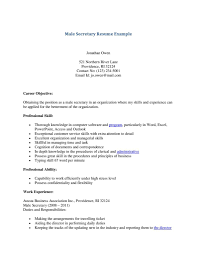 chef resume objective examples secretary resume template resume templates and resume builder secretary resumes samples 81 cool resume sample format examples of resumes carpenter resume berathen you are