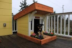 Cool Dog House Plans Unique Design Ideas Cute Designs For Small