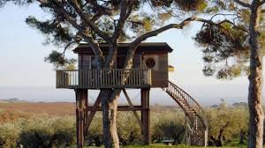 amazing tree houses for living youtube
