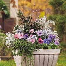 container gardening ideas uk 5 easy ways to make your garden