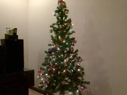wonderfull design cheap tree 284 best images on within