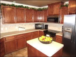 kitchen cabinet stain best staining kitchen cabinets ideas southbaynorton interior home