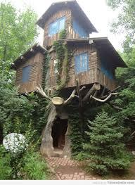 Coolest Tree Houses Amazing Treehouse U2013 Thinknsmile Com