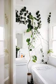 bathroom wallpaper high resolution cool diy hanging planter diy