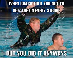 Competitive Swimming Memes - 2 165 likes 18 comments skills nt skillsntalents on instagram