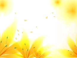 free page backgrounds yellow flower backgrounds group 35