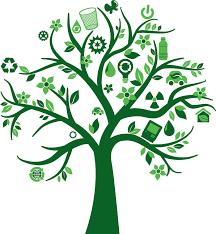 greenspace waste solutions brantford ontario