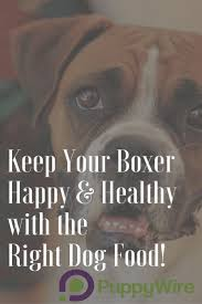 best dog food for boxers top 5 picks w reviews dog food and dog