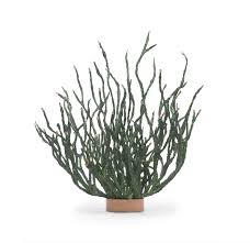 coral table decor large